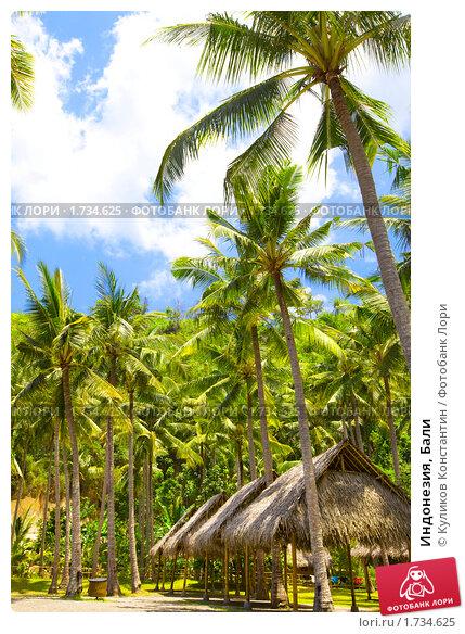 Купить «Индонезия, Бали», фото № 1734625, снято 2 ноября 2009 г. (c) Куликов Константин / Фотобанк Лори