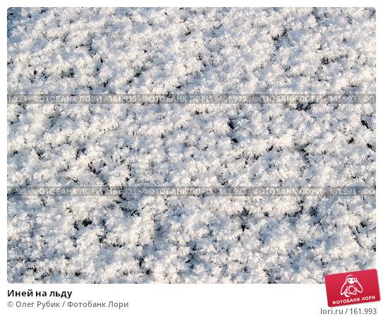 Иней на льду, фото № 161993, снято 26 декабря 2007 г. (c) Олег Рубик / Фотобанк Лори