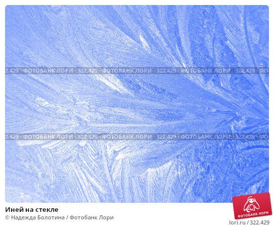 Иней на стекле, фото № 322429, снято 6 февраля 2007 г. (c) Надежда Болотина / Фотобанк Лори