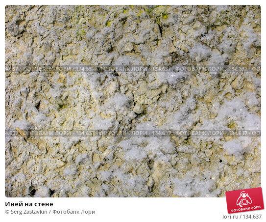 Иней на стене, фото № 134637, снято 18 декабря 2005 г. (c) Serg Zastavkin / Фотобанк Лори