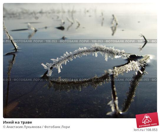 Иней на траве, фото № 108053, снято 29 октября 2005 г. (c) Анастасия Лукьянова / Фотобанк Лори
