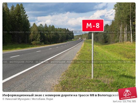 Информационный знак с номером дороги на трассе М8 в Вологодской области. Стоковое фото, фотограф Николай Мухорин / Фотобанк Лори