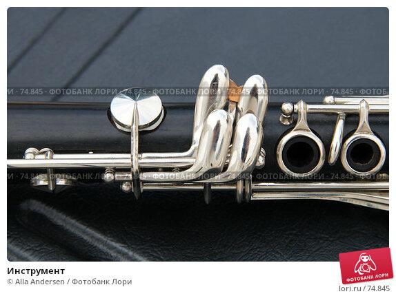 Инструмент, фото № 74845, снято 19 августа 2007 г. (c) Alla Andersen / Фотобанк Лори