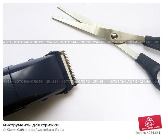 Инструменты для стрижки, фото № 254661, снято 16 марта 2008 г. (c) Юлия Сайганова / Фотобанк Лори