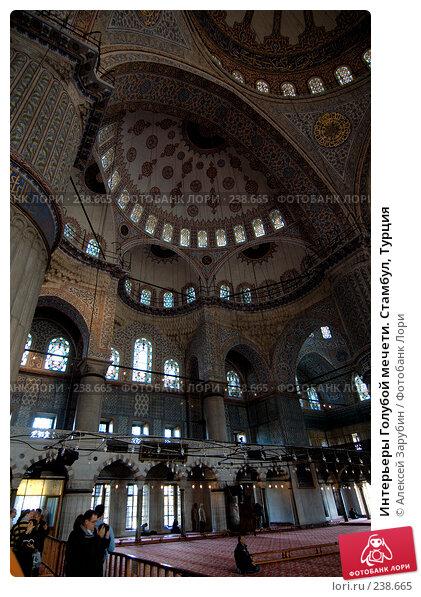 Интерьеры Голубой мечети. Стамбул, Турция, фото № 238665, снято 22 января 2017 г. (c) Алексей Зарубин / Фотобанк Лори