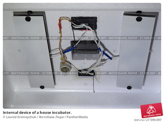 Купить «Internal device of a house incubator.», фото № 27599097, снято 25 апреля 2019 г. (c) PantherMedia / Фотобанк Лори