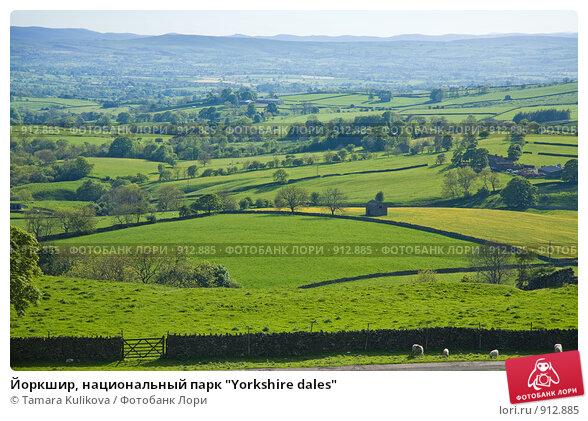 """Купить «Йоркшир, национальный парк """"Yorkshire dales""""», фото № 912885, снято 30 мая 2009 г. (c) Tamara Kulikova / Фотобанк Лори"""