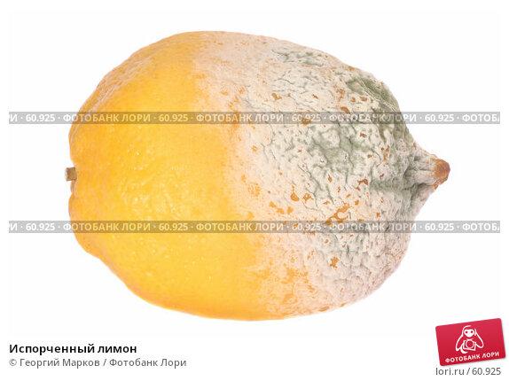 Испорченный лимон, фото № 60925, снято 15 декабря 2006 г. (c) Георгий Марков / Фотобанк Лори