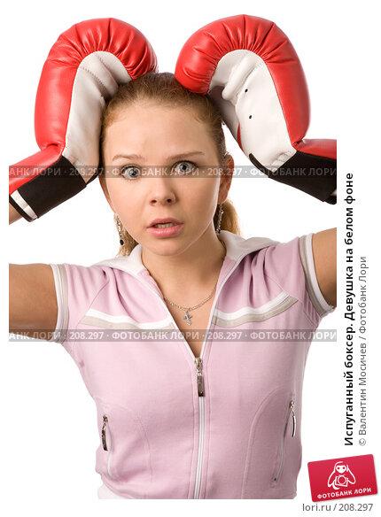 Испуганный боксер. Девушка на белом фоне, фото № 208297, снято 23 февраля 2008 г. (c) Валентин Мосичев / Фотобанк Лори