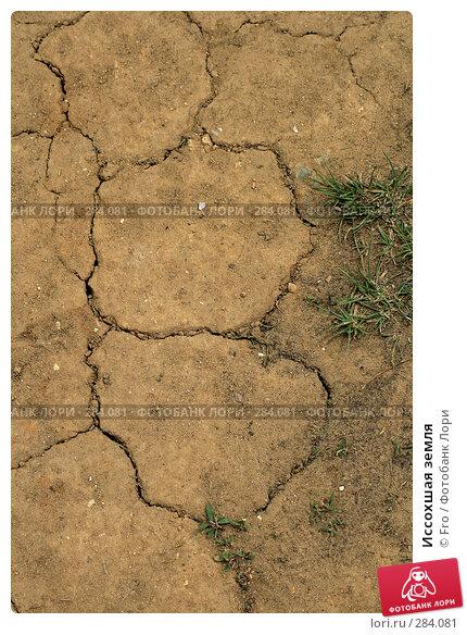 Иссохшая земля, фото № 284081, снято 10 мая 2008 г. (c) Fro / Фотобанк Лори