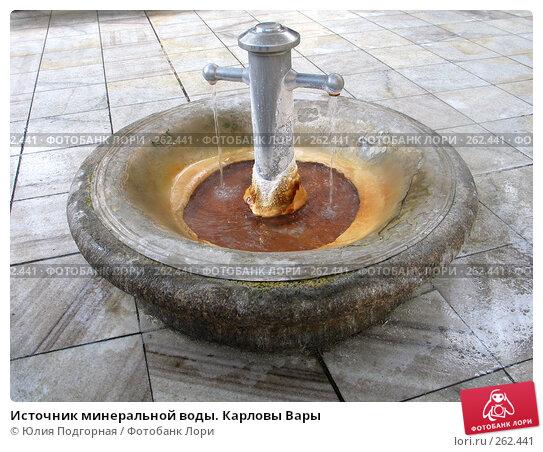 Источник минеральной воды. Карловы Вары, фото № 262441, снято 19 марта 2008 г. (c) Юлия Селезнева / Фотобанк Лори