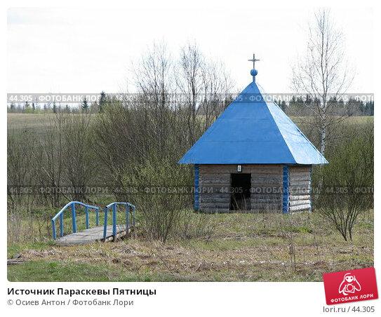 Источник Параскевы Пятницы, фото № 44305, снято 8 мая 2007 г. (c) Осиев Антон / Фотобанк Лори