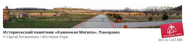 Исторический памятник «Каменная Могила». Панорама, фото № 227589, снято 19 марта 2008 г. (c) Сергей Литвиненко / Фотобанк Лори