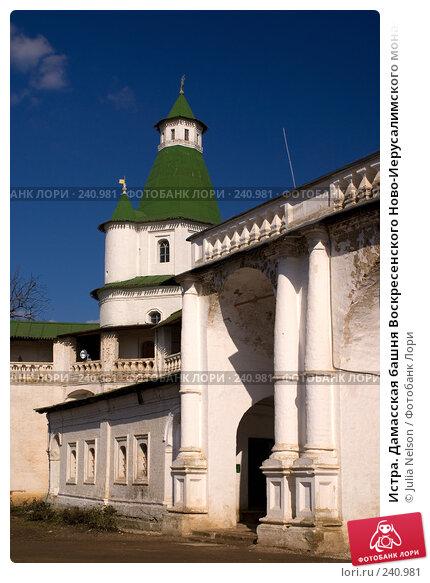 Истра. Дамасская башня Воскресенского Ново-Иерусалимского монастыря, фото № 240981, снято 29 марта 2008 г. (c) Julia Nelson / Фотобанк Лори