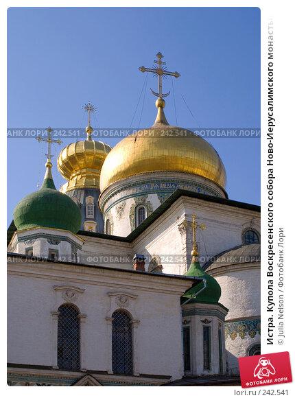 Истра. Купола Воскресенского собора Ново-Иерусалимского монастыря. Вид с востока, фото № 242541, снято 29 марта 2008 г. (c) Julia Nelson / Фотобанк Лори