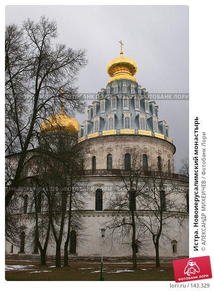 Истра. Новоиерусалимский монастырь, фото № 143329, снято 8 апреля 2007 г. (c) АЛЕКСАНДР МИХЕИЧЕВ / Фотобанк Лори