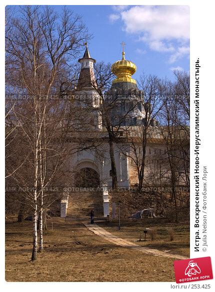 Истра. Воскресенский Ново-Иерусалимский монастырь., фото № 253425, снято 29 марта 2008 г. (c) Julia Nelson / Фотобанк Лори