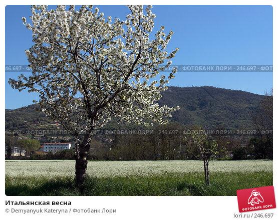 Итальянская весна, фото № 246697, снято 4 апреля 2008 г. (c) Demyanyuk Kateryna / Фотобанк Лори