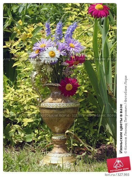 Июньские цветы в вазе, фото № 327993, снято 18 июня 2008 г. (c) Коннов Леонид Петрович / Фотобанк Лори