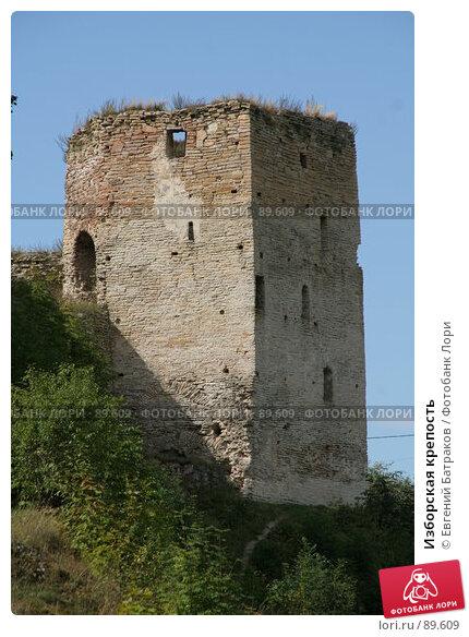 Изборская крепость, фото № 89609, снято 18 августа 2007 г. (c) Евгений Батраков / Фотобанк Лори