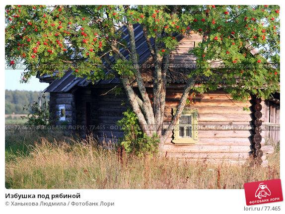 Избушка под рябиной, фото № 77465, снято 21 августа 2007 г. (c) Ханыкова Людмила / Фотобанк Лори