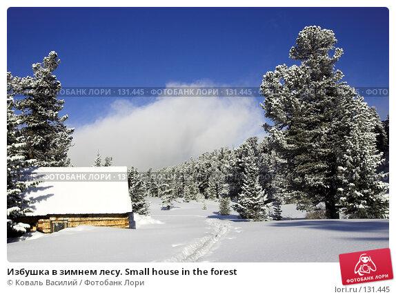 Купить «Избушка в зимнем лесу. Small house in the forest», фото № 131445, снято 25 апреля 2018 г. (c) Коваль Василий / Фотобанк Лори