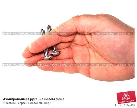 Изолированная рука, на белом фоне, фото № 184629, снято 16 декабря 2007 г. (c) Катыкин Сергей / Фотобанк Лори