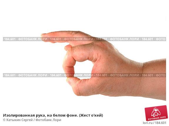 Изолированная рука, на белом фоне. (Жест о'кей), фото № 184601, снято 16 декабря 2007 г. (c) Катыкин Сергей / Фотобанк Лори