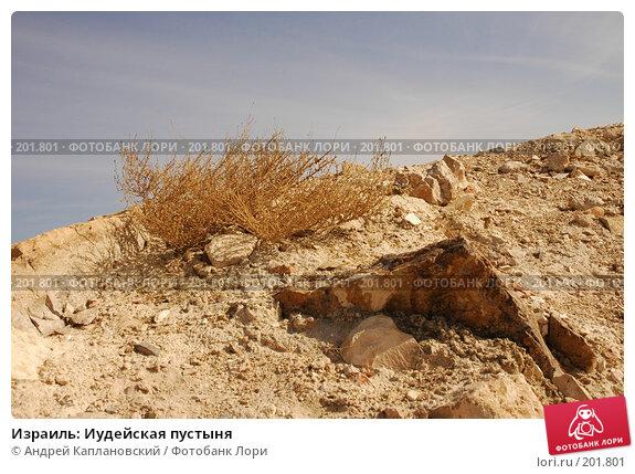 Израиль: Иудейская пустыня, фото № 201801, снято 31 декабря 2007 г. (c) Андрей Каплановский / Фотобанк Лори