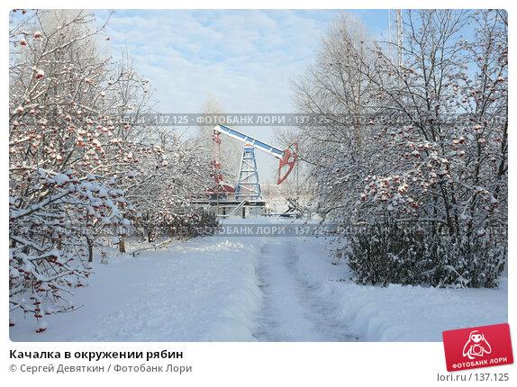 Качалка в окружении рябин, фото № 137125, снято 4 декабря 2007 г. (c) Сергей Девяткин / Фотобанк Лори