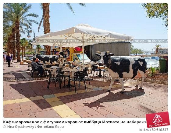 Купить «Кафе-мороженое с фигурами коров от киббуца Йотвата на набережной в Эйлате», фото № 30616517, снято 3 марта 2019 г. (c) Irina Opachevsky / Фотобанк Лори
