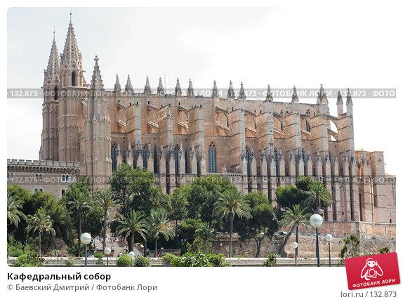Купить «Кафедральный собор», фото № 132873, снято 26 июня 2007 г. (c) Баевский Дмитрий / Фотобанк Лори