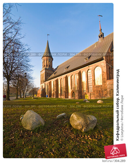 Кафедральный собор. Калининград, фото № 304289, снято 30 декабря 2007 г. (c) Liseykina / Фотобанк Лори