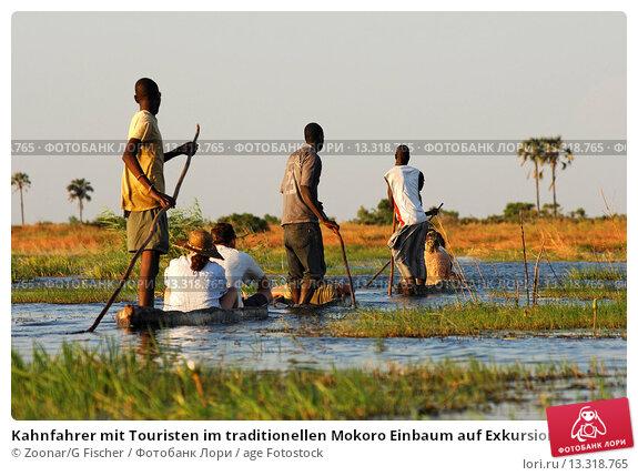 Kahnfahrer mit Touristen im traditionellen Mokoro Einbaum auf Exkursion im Okavango Delta, Botswana / Boatmen with tourists in traditional mokoro logboats on excursion in the Okavango Delta, Botswana. Стоковое фото, фотограф Zoonar/G Fischer / age Fotostock / Фотобанк Лори