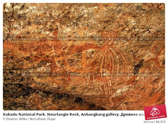 Kakadu National Park. Nourlangie Rock, Anbangbang gallery. Древнее изображение ритуальных сцен из жизни аборигенов, фото № 44313, снято 4 июня 2007 г. (c) Eleanor Wilks / Фотобанк Лори