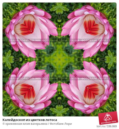 Калейдоскоп из цветков лотоса, иллюстрация № 336069 (c) крижевская юлия валерьевна / Фотобанк Лори