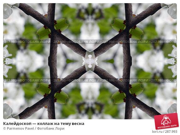 Калейдоскоп — коллаж на тему весна, фото № 287993, снято 10 мая 2008 г. (c) Parmenov Pavel / Фотобанк Лори