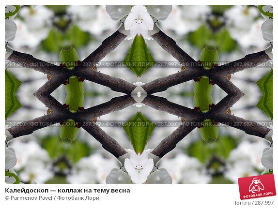 Купить «Калейдоскоп — коллаж на тему весна», фото № 287997, снято 10 мая 2008 г. (c) Parmenov Pavel / Фотобанк Лори
