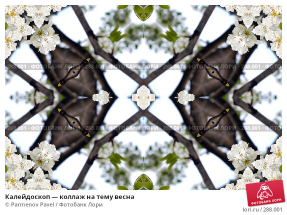 Калейдоскоп — коллаж на тему весна, фото № 288001, снято 10 мая 2008 г. (c) Parmenov Pavel / Фотобанк Лори