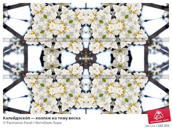 Калейдоскоп — коллаж на тему весна, фото № 288005, снято 10 мая 2008 г. (c) Parmenov Pavel / Фотобанк Лори