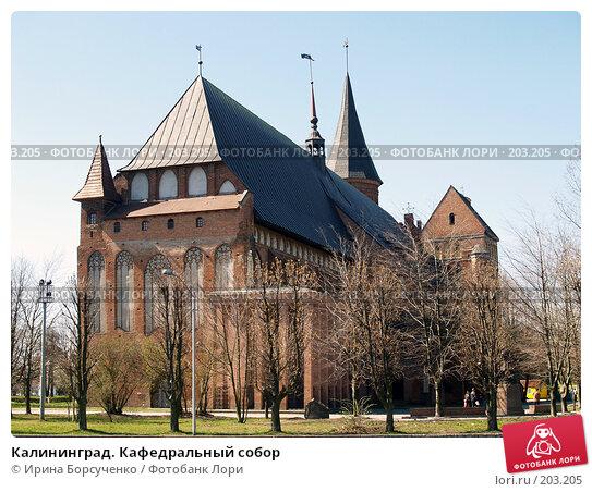 Купить «Калининград. Кафедральный собор», фото № 203205, снято 15 апреля 2007 г. (c) Ирина Борсученко / Фотобанк Лори