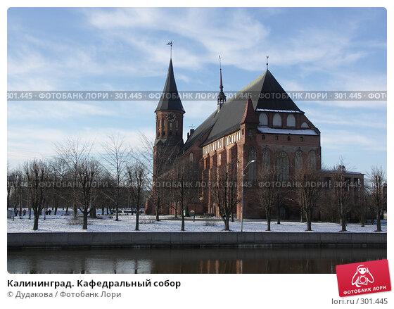 Калининград. Кафедральный собор, фото № 301445, снято 25 января 2007 г. (c) Дудакова / Фотобанк Лори