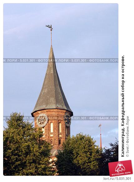 Купить «Калининград. Кафедральный собор на острове.», эксклюзивное фото № 5031301, снято 28 августа 2013 г. (c) Svet / Фотобанк Лори