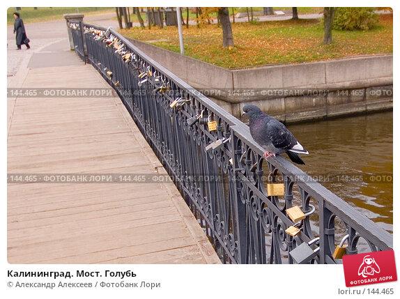Калининград. Мост. Голубь, эксклюзивное фото № 144465, снято 30 октября 2007 г. (c) Александр Алексеев / Фотобанк Лори