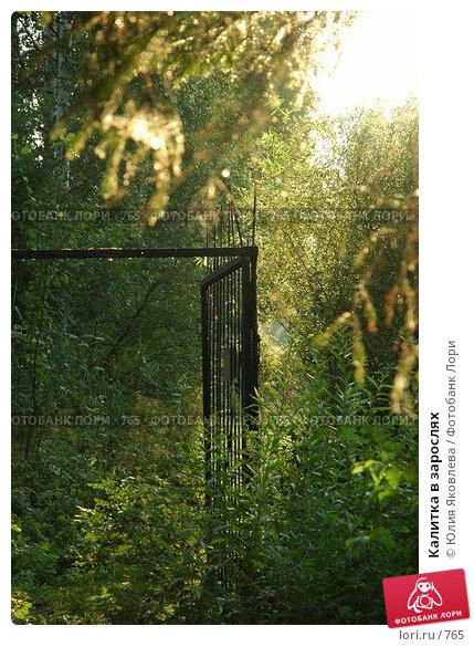 Калитка в зарослях, фото № 765, снято 5 августа 2005 г. (c) Юлия Яковлева / Фотобанк Лори