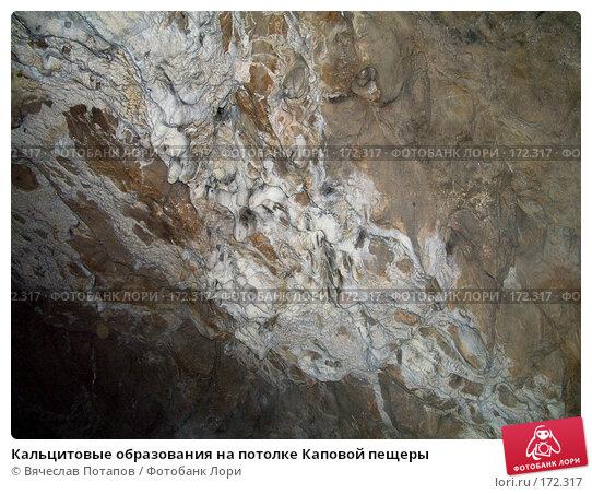 Купить «Кальцитовые образования на потолке Каповой пещеры», фото № 172317, снято 18 октября 2007 г. (c) Вячеслав Потапов / Фотобанк Лори