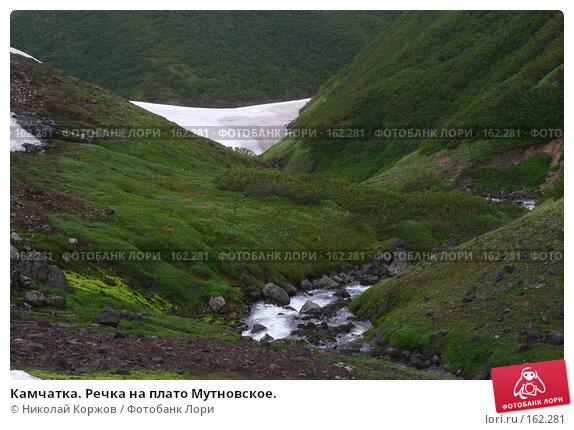 Камчатка. Речка на плато Мутновское., фото № 162281, снято 26 июня 2007 г. (c) Николай Коржов / Фотобанк Лори