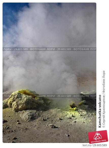Купить «Kamchatka volcano», фото № 29603589, снято 10 сентября 2012 г. (c) Сергей Краснощеков / Фотобанк Лори