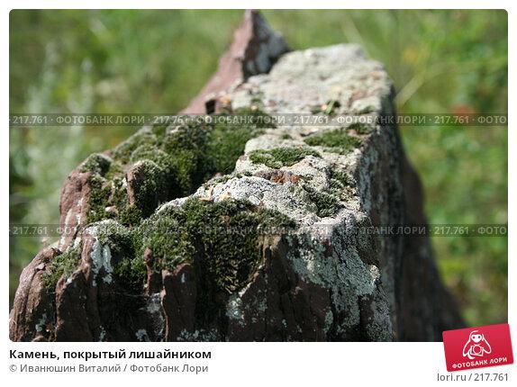Камень, покрытый лишайником, фото № 217761, снято 22 июля 2007 г. (c) Иванюшин Виталий / Фотобанк Лори