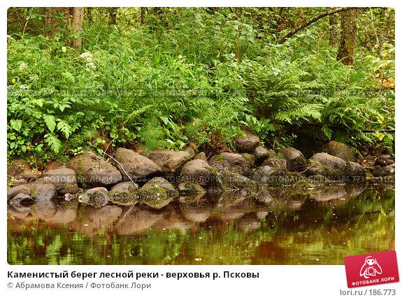 Каменистый берег лесной реки - верховья р. Псковы, фото № 186773, снято 6 июля 2007 г. (c) Абрамова Ксения / Фотобанк Лори